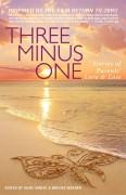 Three Minus One cover (Custom)